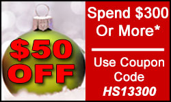 Holiday Coupon